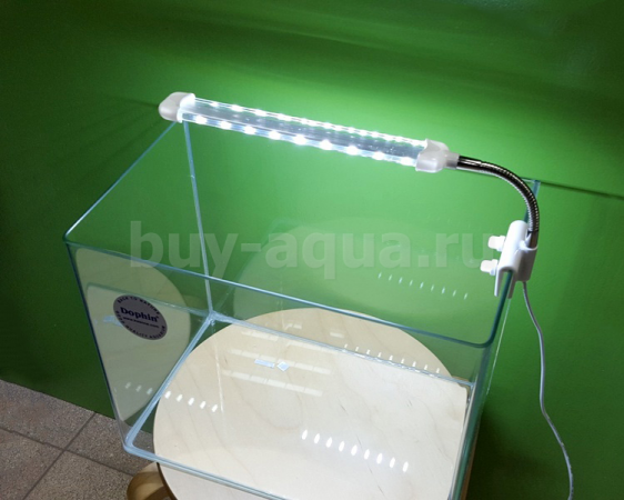 Barbus Led Mini Light